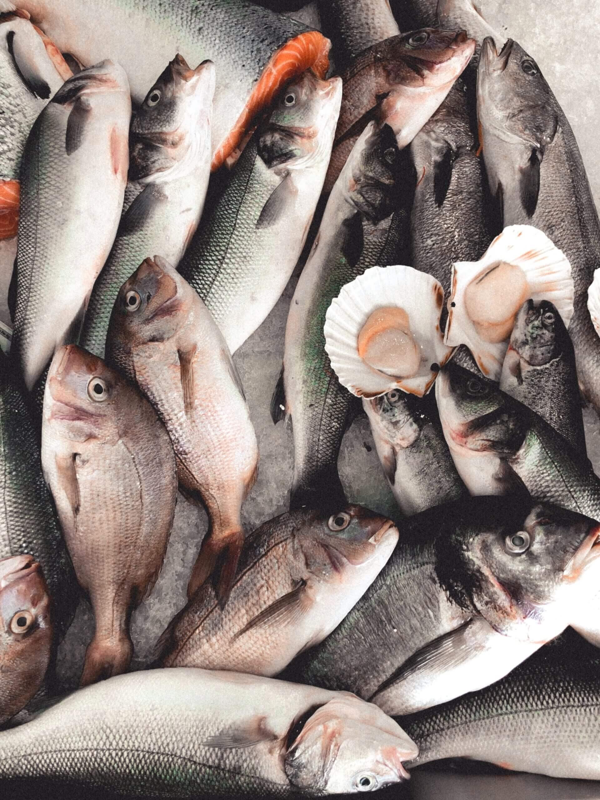 Restaurante El Faro - Pescados